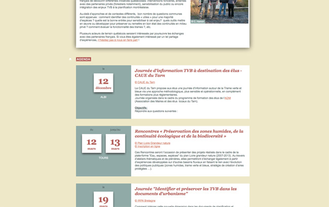 newsletter_tvb_9